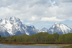 Grand Teton National Park (cbmtax) Tags: travel trees snow tree water river nationalpark spring snakeriver wyoming grandteton