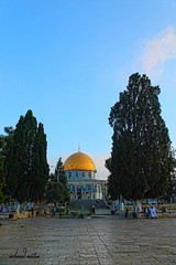 Ramadan in Al Aqsa masjid  sanctuary (TeamPalestina) Tags: heritage beautiful architecture sunrise hope amazing photographer sweet palestine jerusalem domeoftherock blockade freepalestine alaqsa palestinian occupation goldendome  oldcityjerusalem landscapecaptures