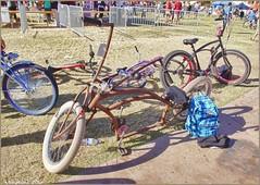 5232 (AJVaughn.com) Tags: park new arizona people beach beer colors bike bicycle sport alan brewing de james tour belgium bright cosplay outdoor fat parade bicycles vehicle athlete vaughn tempe 2014 custome ajvaughn