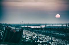 IMG_9551- (Artohua Chou) Tags: sunset landscape