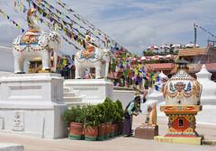 Mujer ofreciendo incienso a Buda en la estupa de Bodhnath, en Katmandu (Nepal), 2013. (Luis Miguel Surez del Ro) Tags: nepal kathmandu boudhanath buda ofrenda incienso estupa katmand