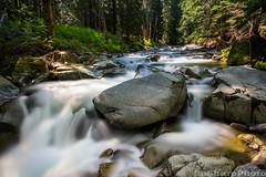Stevens Creek (b#Photo) Tags: longexposure water creek forest waterfall washington nationalpark nikon rocks hiking mountrainiernationalpark pacificnorthwest stevenscreek bsharpphoto