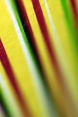 Stripes (De Rode Olifant) Tags: paper stripes macromondays marjansmeijsters