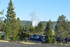 Castle Geyser, Yellowstone National Park (David A's Photos) Tags: castle june yellowstonenationalpark yellowstone geyser yellowstonetrip ugb uppergeyserbasin june2016