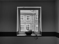Window (FloHimself) Tags: blackandwhite white black monochrome canon germany geotagged deutschland powershot and weiss schwarz lneburg g10 canonpowershotg10