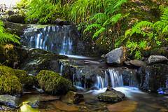Loch Lomond Stream (Ross Dorran) Tags: longexposure green water contrast landscape scotland unitedkingdom loch lochlomond