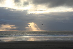 Cannon Beach (GregKoller) Tags: cannonbeach oregoncoast