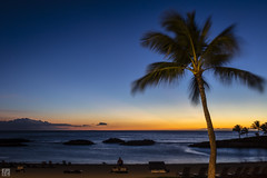 Ko Olina Blue (lycheng99) Tags: koolina koolinabeachresort oahu hawaii palmtree sunset dusk bluesky bluehour blue sky colors ocean beach lagoon landscape nature longexposure wind people chairs jupiter venus planets bright