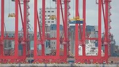 Liverpool Two (New Deep Water Container Terminal STS Crane Trials / Test) 4th August 2016 (Cassini2008) Tags: portofliverpool liverpooltwo liverpooldeepwatercontanierterminal sts stscranes docks rivermersey peelports