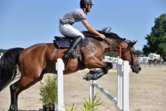 DSC_1169 (2) (ploufjf_64) Tags: paus show jumping chevaux pau 2016