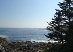 looking at a spit of land in Atlantic, Pemaquid (Martin LaBar) Tags: maine tree coast waves atlantic atlanticocean rocks