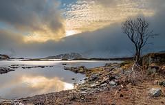 """Lofoten2016-23 (Federico """"Jger"""" Serafini) Tags: norvegia lofoten ghiaccio rocce rocks norway aurora boreale northern light clouds nuvole sea spiaggia long exposure"""