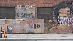 DSCF0094 (alexander.bierling) Tags: fuji xt10 ny new york brooklyn williamsburg bushwick streetart grafitty