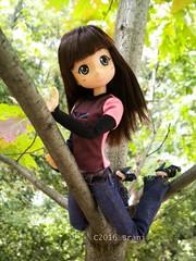 I see everything ! (Brani's fashion dolls) Tags: animedolls big eyes japanese dolls modori princess ori articulated livdolls