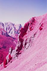 Ciampac (fra_padovani) Tags: infrared aerochrome eir analog 35mm kodak olympusom2n