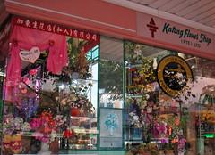 Katong Flower Shop (boeckli) Tags: windows windowwednesdays fenster outdoor singapore katong flowershop flowers reflection reflections spiegelung shop shopwindow laden schaufenster geschft colorful colourful bunt farbig sign colour colours colors