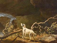 une vie de chien (7) (canecrabe) Tags: dog chien amsterdam tivoli muse paysage cascade rijksmuseum hadrien abrahamteerlink