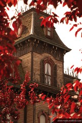 Disneyland - Phantom Manor (toneijkemans.com) Tags: park old trip autumn red vacation house holiday paris france color halloween nature beautiful beauty leaves garden fun mouse amusement vakantie photo scary nikon europe foto ride image euro disneyland quality ghost creative victorian picture pic mickey haunted mooi phantom manor walt themepark attraction frontierland 75mm creatief afbeelding d40 d40x