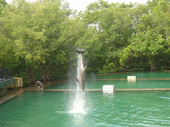Miami-Seaquarium-miami-1347252-2048-1536 (i-Tours) Tags: