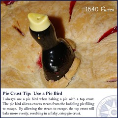 "Here's my final Pie Crust Tip:  Use a Pie Bird.  When making a pie with a top crust, use a pie bird.  This sweet little bird will help excess steam escape and lead to a more evenly baked top crust.  Pie birds make a lovely decoration in our farmhouse kitc • <a style=""font-size:0.8em;"" href=""http://www.flickr.com/photos/54958436@N05/15690485908/"" target=""_blank"">View on Flickr</a>"