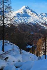 L'Altro Versante (Roveclimb) Tags: lake alps trekking lago see ticino suisse hiking campo svizzera alpi snowshoes madone pizzo maggia escursionismo ciaspole cevio cimalmotto sfii sfille batnal