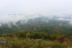 Gooney Run Overlook (daveynin) Tags: cloud leaves rain weather fog nps foliage deaftalent deafoutsidetalent deafoutdoortalent