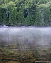 Above and Below (Jeff Woodard Photography) Tags: park morning trees water fog pine pond maine national bubble acadia acadianp