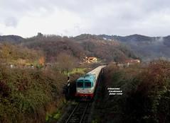 D345 1144---Diesel tra le colline (Giacomo Casabianca---JackE656) Tags: diesel merci lucca cargo treno fivizzano trenitalia ferrovia lunigiana aulla d345 kerakoll combinato gassano