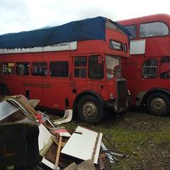 IMG_1258 (richmehere) Tags: bus london vintage open top cab transport double half tours decker 128dtd