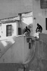 Pensadores (ramosblancor) Tags: blackandwhite blancoynegro morocco human tribes medina habitat marruecos humano tangier tanger tribus