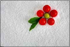 IMG_4977/a (*melkor*) Tags: light red white snow macro green art fruits geotagged salt experiment newyear minimal greetings conceptual leafs fakesnow lightbox genuine 2015 melkor trashbit smallfruits thegenuineone genuinecolors