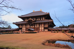 Nara Park11.2 (goodtimes1104) Tags: travel vacation japan temple asia historical nara todaji narapark acrhitecture todajijo