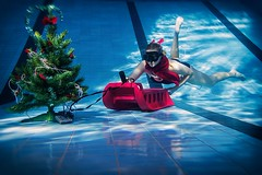 Free Xmass_ (Petr Kleiner) Tags: blue red woman black tree green pool swimming canon t mirror fly dress fanny nik blac xmass swiming ps6