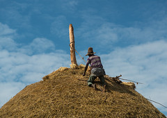 Man covers the thatched roof of a traditional ethiopian house, Kembata, Alaba kuito, Ethiopia (Eric Lafforgue) Tags: africa wood roof sky people house color home horizontal architecture outdoors photography wooden construction village adult african traditional culture straw progress hut thatch typical ethiopia thatched hornofafrica developing ethiopian riftvalley eastafrica thiopien etiopia abyssinia ethiopie etiopa ruralscene unrecognizable buildingexterior onemanonly  etiopija 1people ethiopi alaba  toukoul etiopien etipia halaba  etiyopya  unrecognizableperson    kembata      alabakuito ethio163354