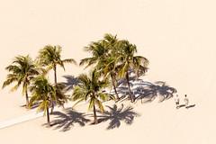 (lemank) Tags: beach people mk aerialview fortalauderdale