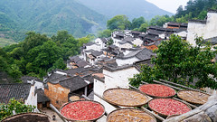 WuYuan  Good Harvest  (xxcheng) Tags: china mountains tree architecture landscape countryside scenery village outdoor smoke harvest scene explore  tradition    wuyuan jiangxi      inexplore    wuyuancounty