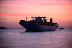 Merete Maersk (larry_antwerp) Tags: port ship belgium belgi vessel container antwerp schelde  antwerpen  schip   maersk               apmoller            meretemaersk        9632064