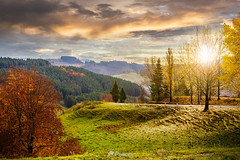 forest over foggy valley in autumn mountains at sunset-131019 (M. Pellinni) Tags: morning travel autumn cloud sun sunlight mist mountain plant tree green fall nature beautiful fog rural forest sunrise season landscape evening haze colorful europe ray view outdoor background country hill foggy scenic meadow dramatic peak calm beam ridge valley flare environment dropbox ifttt