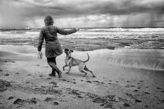 Stormy day (mirsavio) Tags: blackandwhite dog see israel women stormy haifa batgalim fujifilmxt1 fujinon855