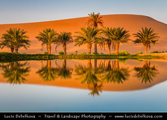 United Arab Emirates - UAE - Al Ain desert oases with palm trees (© Lucie Debelkova / www.luciedebelkova.com) Tags: world trip travel trees light vacation panorama holiday tree tourism beautiful landscape outdoors sand tour gulf view place desert dunes muslim dune uae sightseeing scenic middleeast visit location tourist paisagem palm arabic arab journey arabia vista destination sight traveling visiting alain paysage exploration unitedarabemirates touring paesaggio gcc magiclight emirateofabudhabi luciedebelkova wwwluciedebelkovacom