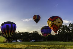 Florida Balloons (Mike Snape) Tags: sunrise balloons florida balloon polk polkcounty