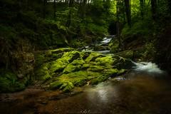 Wutachschlucht (SageJTN) Tags: river germany stream blackforest