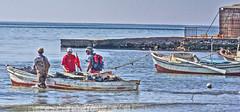 fishermen-2 (albyn.davis) Tags: people fishermen sea ocean water boats working turkey travel