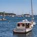 Rockport Harbor Masts