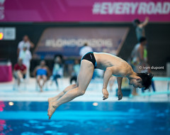 European Masters Diving Championships, London 2016, United Kingdom (monsieur I) Tags: london sports water sport athletic unitedkingdom extreme dive competition diving swimmingpool diver masters extremesport intheair acrobatic aquaticscentre europeanmasters acrobaticdiving monsieuri london2016 europeanmastersdivingchampionships