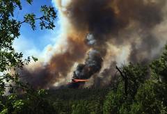 20160615-FS-UNK-0004 (USDAgov) Tags: fire us az whiteriver wildfire cedarfire