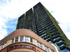 the old clare (pedro smithson) Tags: park old travel orange brick green architecture hotel nikon clare contemporary central sydney australia lookup architect nsw balconies nouvel oceania refurbish jeannouvel oceanica contemporaryarchitecture d5100 pedrosmithson