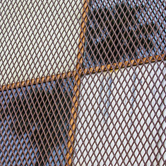 pair o' peeping palms (MyArtistSoul) Tags: venturaca juniperothompson acrossfromtopatopa abandonedbuilding security mesh grid perforatedmetal rusty window orange bars white blue sky green palm trees reflections pattern quadrants abstract minimal urban square 0322 fromseriesawaitingapintoftuxattopatopa