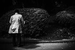 Des solitudes  Tokyo (www.danbouteiller.com) Tags: japan japon japanese japonais people man old homme tokyo city ville ueno park parc hat monochrome mono monochromatic bw nb noir blanc black white noiretblanc noirblanc blackandwhite blackwhite canon canon5d eos 5dmk2 5d 50mm 50mm14 5d2 5dm2