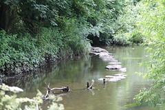 Stepping stones (sflangridge) Tags: steppingstones londonloop